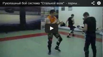 Школы рукопашного боя в Москве